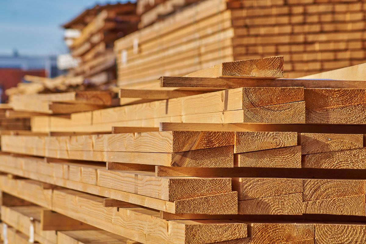 Bauen mit Holz und Lehm - Holz