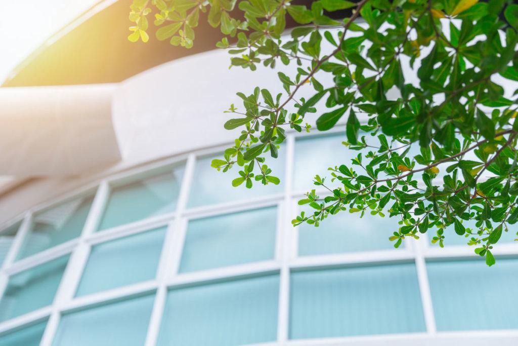 Nachhaltigkeit am Bau - Glasfassade mit Blätter